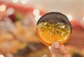 Recettes à oranges confites pour une ambiance de fête à la table