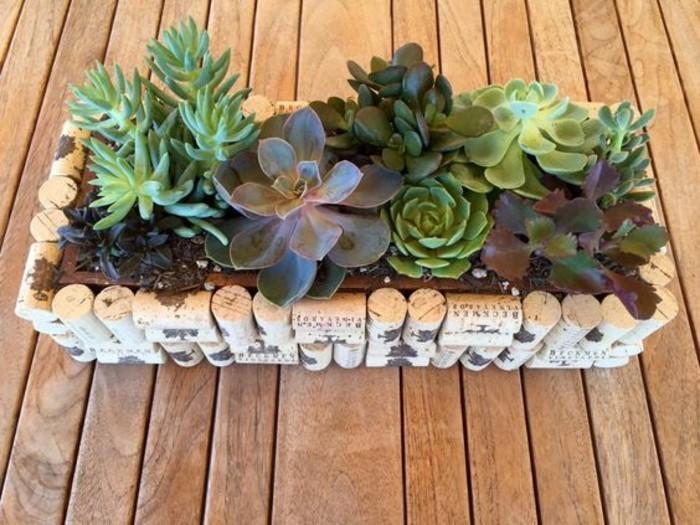 pot-de-succulents-a-faire-de-bouchons-liege
