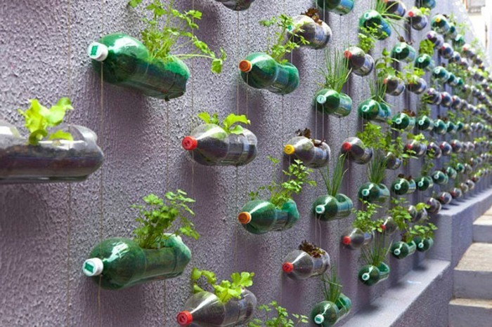 que-faire-avec-des-bouteilles-en-plastique-un-mur-vegetal-pots-de-fleurs-en-plastique-a-faire-soi-meme