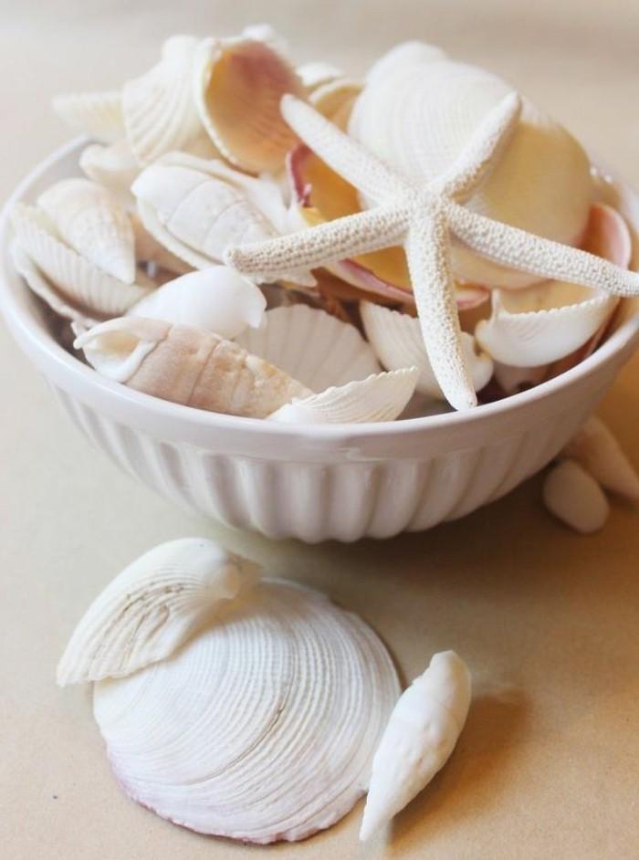que-faire-avec-des-coquillages-deco-dete-etoile-de-mer