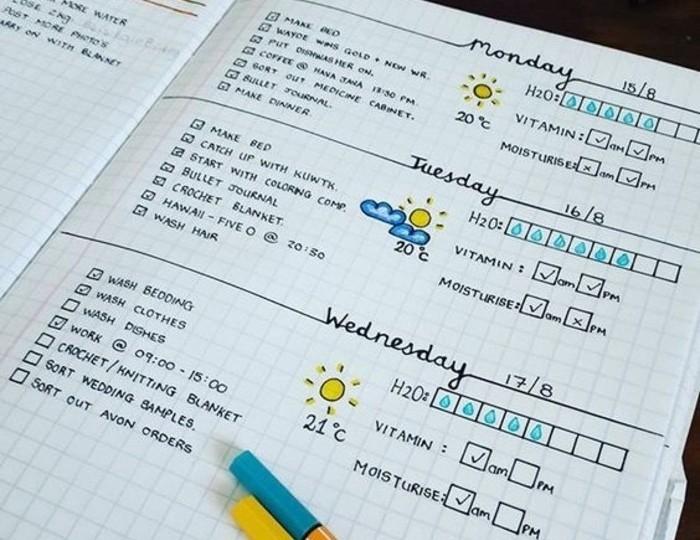une-superbe-maniere-de-customiser-son-agenda-diy-jolie-ecriture-et-dessins-meteo