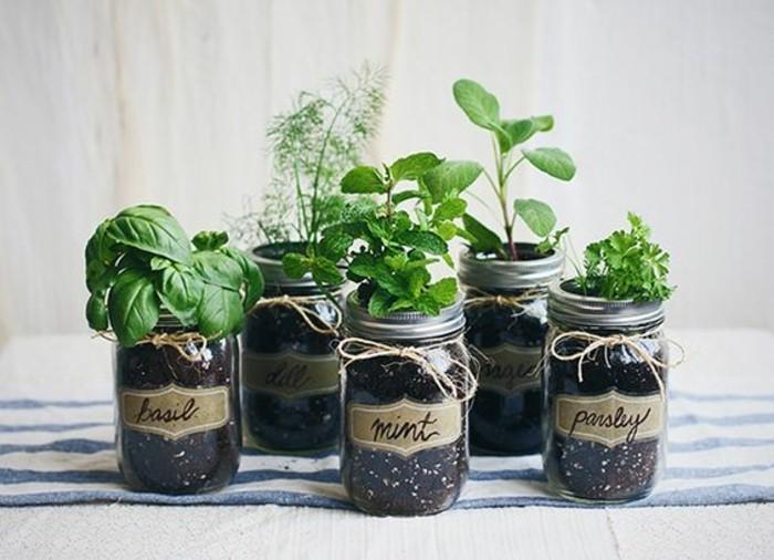 1que-faire-avec-des-pots-de-yaourt-en-verre-plantes-et-herbes-signes-avec-des-noms