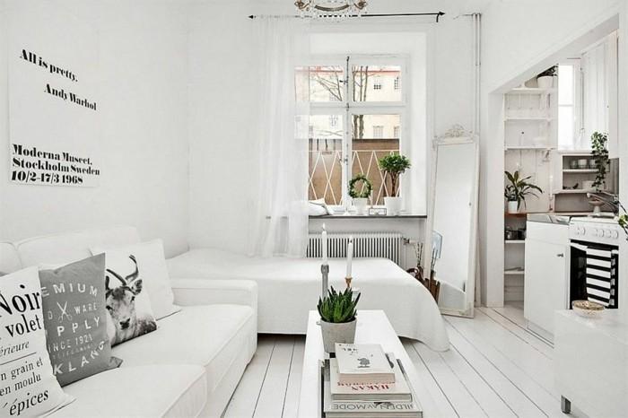 amenagement-petit-espace-petite-cuisine-compacte-four-canape-et-lit