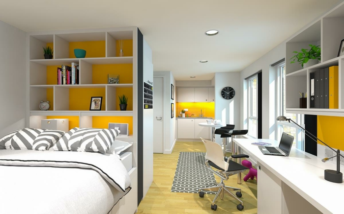 amenager-un-petit-appartement-etagere-de-livres-bureau-lit-double-cuisine