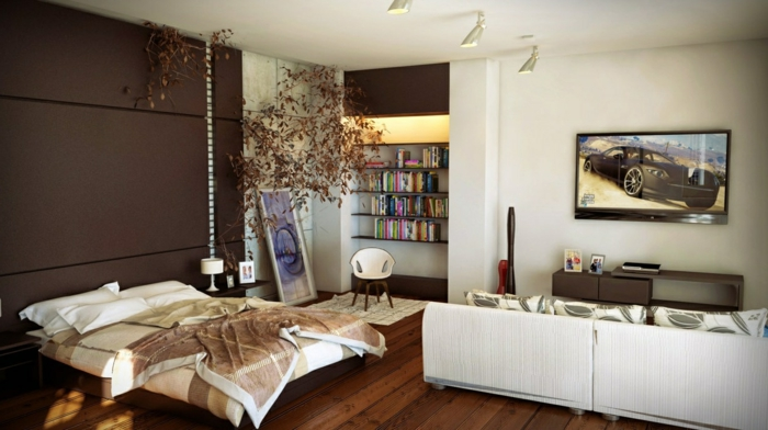 amenager-un-petit-appartement-bibliotheque-a-livres-grand-lit-canape-modulable