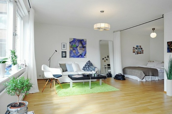 amenager-un-petit-appartement-tapis-vert-plantes-peintures-miroir