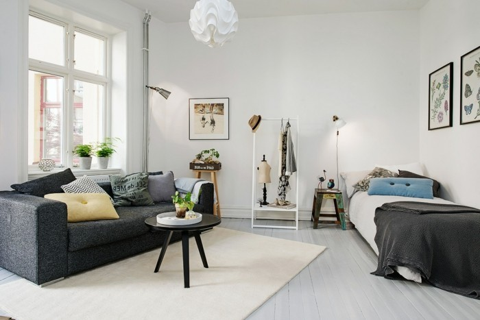amenager-petit-espace-canape-gris-belle-vue-grand-miroir-lit-une-personne