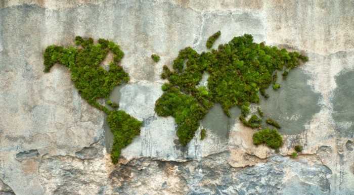 carte-du-monde-mappemonde-en-mousse-vegetale-mur-decrepi