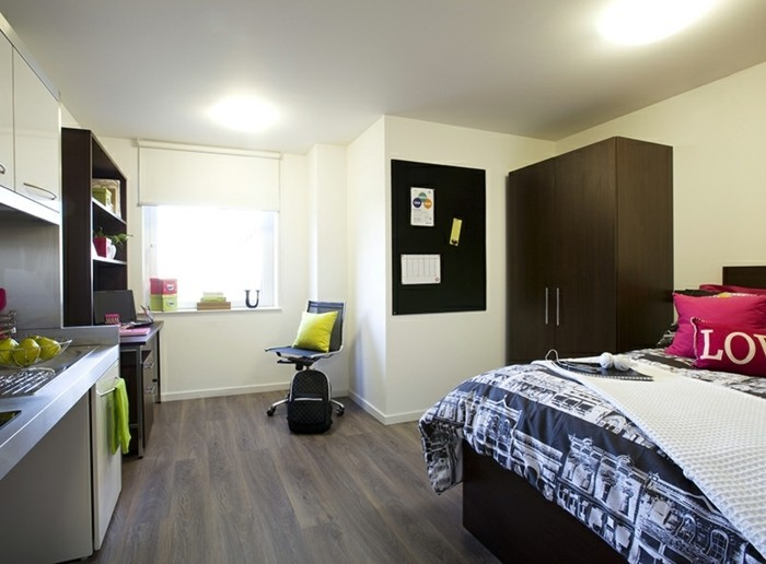 comment-amenager-un-studio-chambre-etudiant-grand-lit-cuisine-equipee