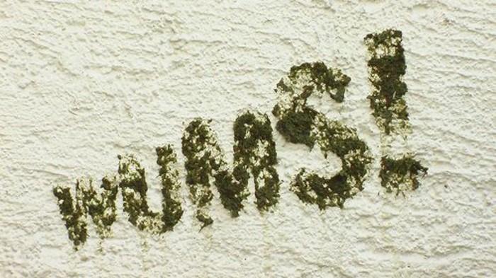 comment-faire-un-simple-graffiti-en-mousse-vegetale