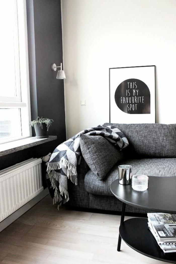 déco-salon-gris-sofa-gris-et-table-de-salon-noire