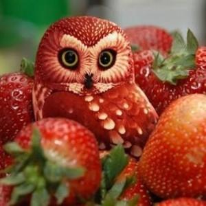 La sculpture sur fruits et légumes - l'art délicieux en plus de 90 photos