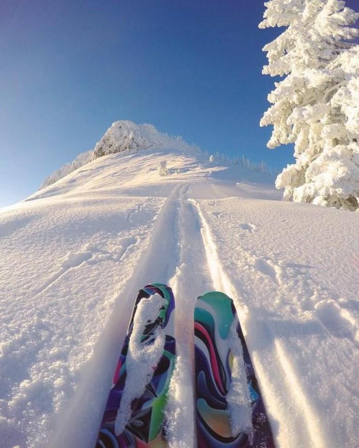 enneigement-station-ski-arbre-montagne-paire-de-ski-multicolore