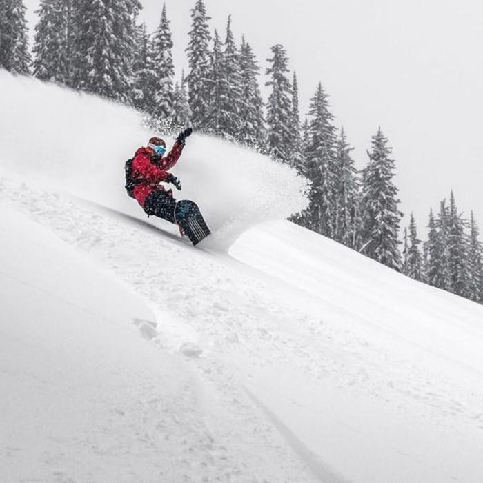 enneigement-station-ski-divertissement-arbres-pins-vêtement-approprié