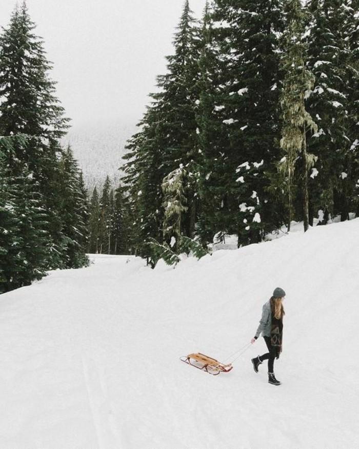 enneigement-station-ski-se-promener-dans-la-montagne-avec-un-traîneau