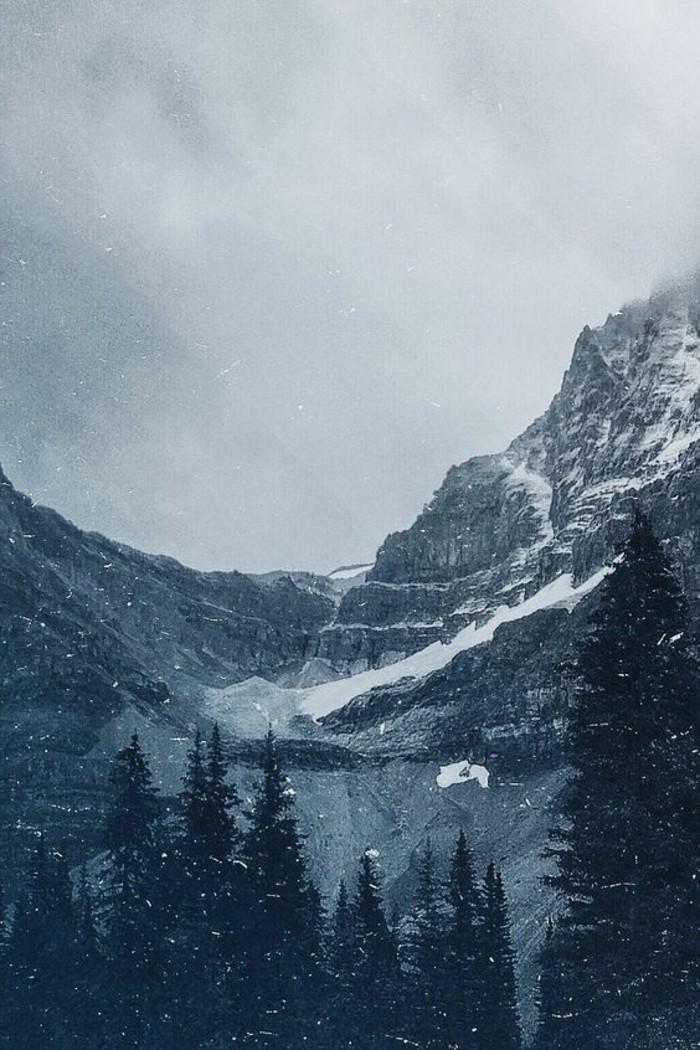 fonds-d-écran-hiver-photo-de-la-nature-enneigée-avec-des-sapins-majesteux