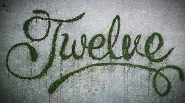 inscription-artistique-en-mousse-vegetale-mur-gris