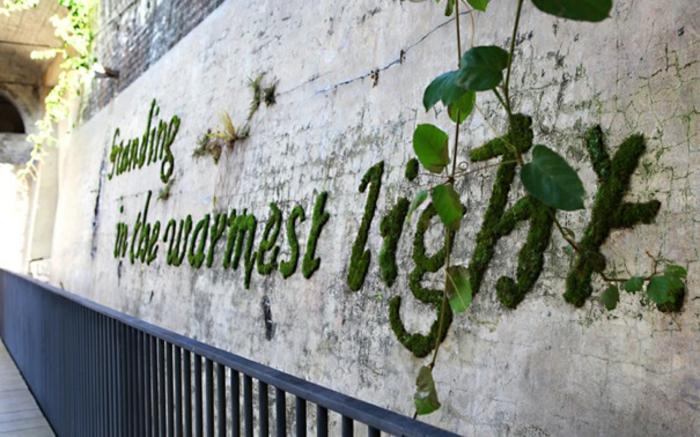 inscription-message-ecologique-graffiti-en-mousse