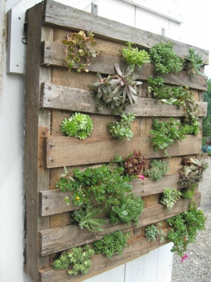 Le Mur Végétal En Palette - Idées Originales Pour Un Jardin