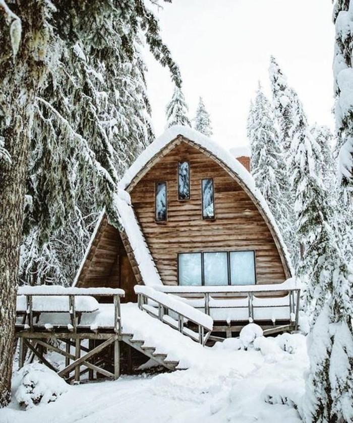 paysage-montagne-neige-cabine-en-bois-escalier-forêt-sapins-enneigés