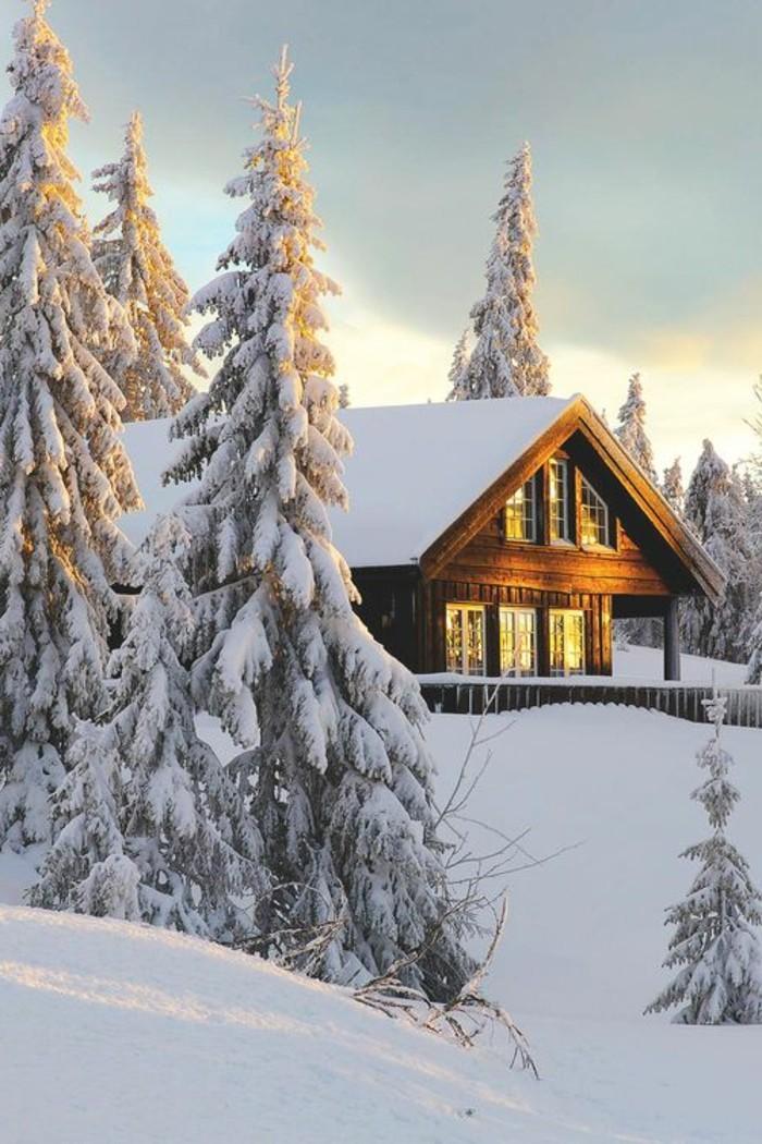 paysage-montagne-neige-cabine-en-bois-soleil-brillant-sapins-enneigés