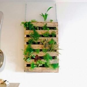Le mur végétal en palette - idées originales pour un jardin vertical récup