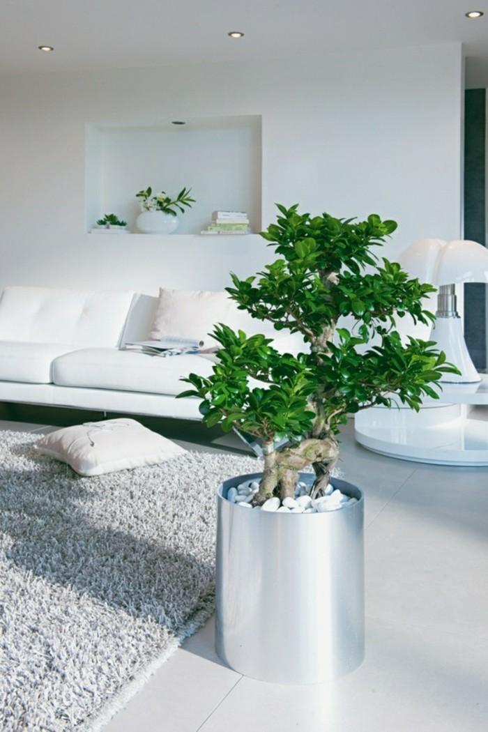 decoration zen, plante tropicale, tapis gris, canapé et murs blancs, pot à fleur gris