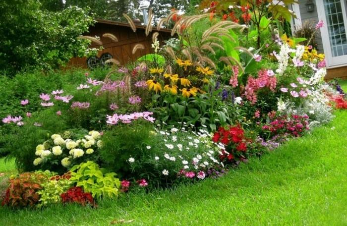 parterre de fleur de couleurs et de tailles diverses, un gazon, maison rustique, idée comment aménager un jardin