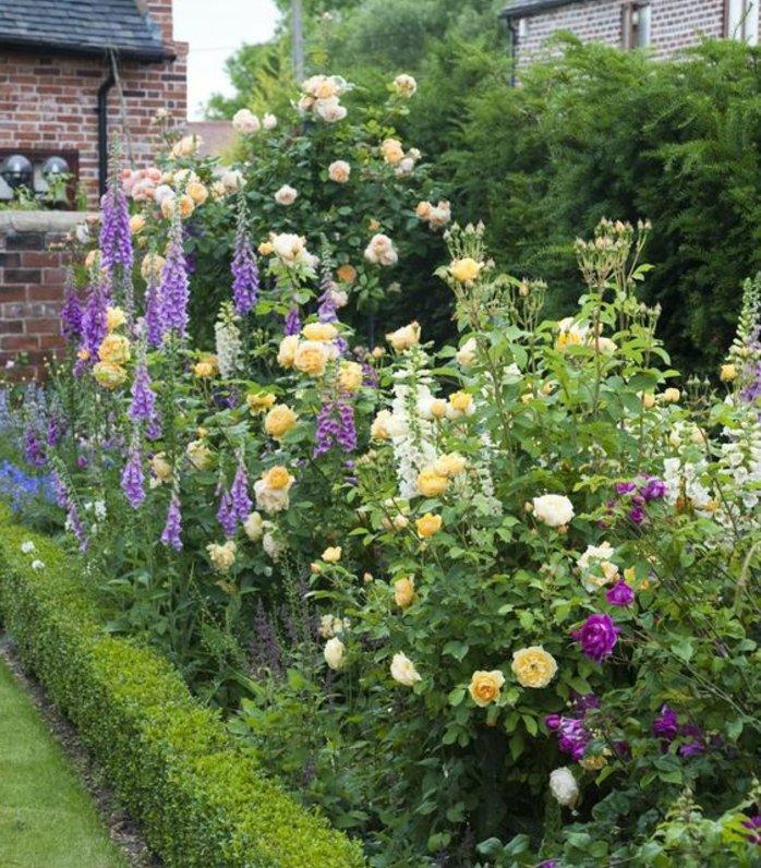 parterre de fleurs, roses rouges et jaunes, buis bas, maison en briques apparentes, pelouse, idée de génie jardin intéressante