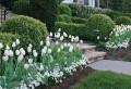 Parterre de fleurs – conseils pour l'aménager et 55 modèles hors du commun