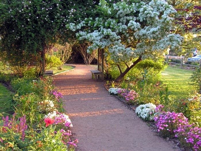 bordure parterre de fleurs blanches et rose, le long d une allée, un arbre fleurs blanches, banc en bois, coin détente en plein air