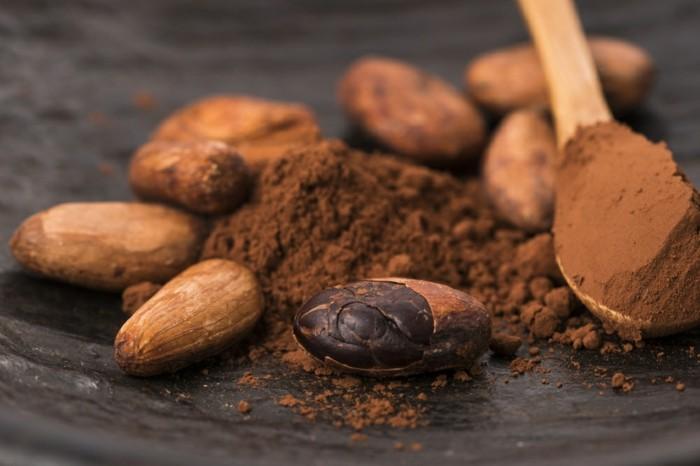le cacao, une source de fer pour augmenter la quantité de fer dans l'organisme, idée aliment riche en fer