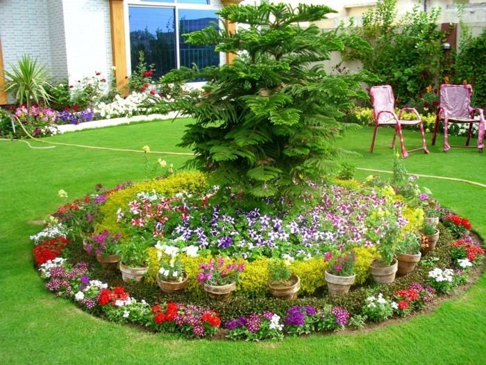 un cercle de fleurs pétunias et autres petites fleurs multicolores, un arbre vert au centre, composition florale au milieu d une pelouse, parterre de fleurs