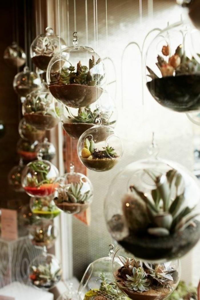 déco-chambre-ado-hipster-terrarium-décoration-de-verdure