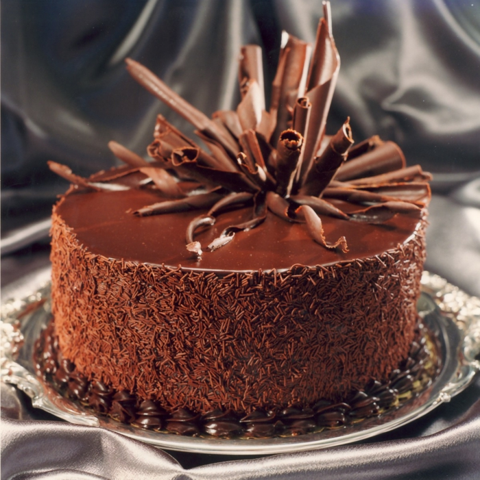 decoration gateau charlotte au chocolat id es de