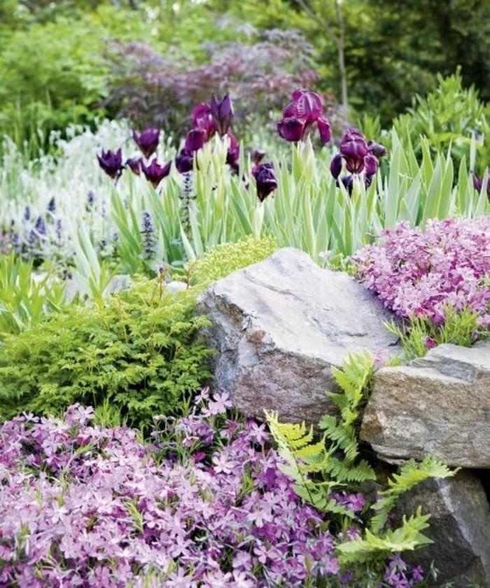 idée-d-amenagement-rocaille-jardin-a-faire-soi-meme-des-tulipes-des-fleurs-des-arbustes-vertes