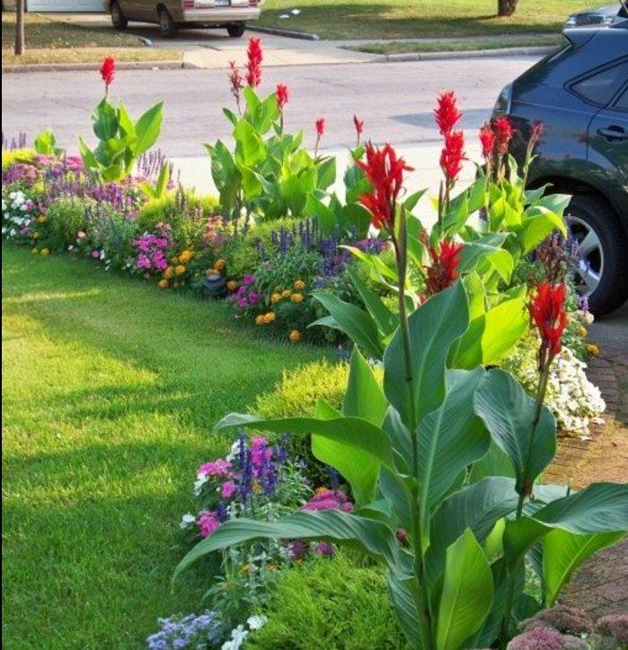 parterre de fleur au bord d'une pelouse, près d'une allée maison, idee jardin à créer soi meme, plantes de taille différente