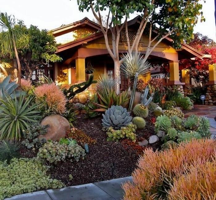 maison-style-colonial-avec-un-rocaille-jardin-a-l-avant-idée-comment-aménager-un-jardin-tropical-pierres-terreau-palmiers-succulents
