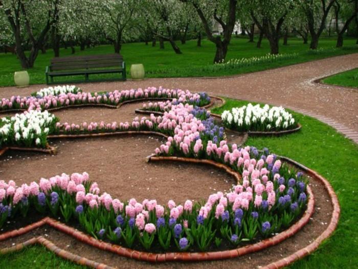 jacinthes de couleurs variées, arrangés en formes diverses, idée comment aménager un jardin à la française