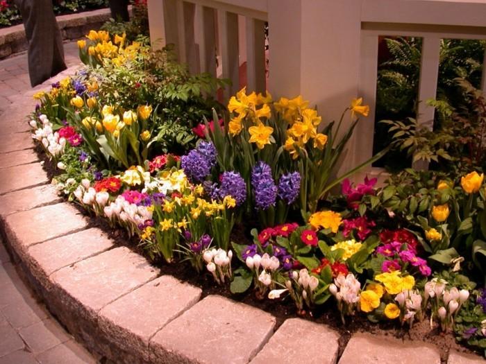 parterre de fleurs printanières, bulbes, jacinthes, jonquilles, crocus, près d une clôture, idée comment aménager un coin fleuri dans son jardin