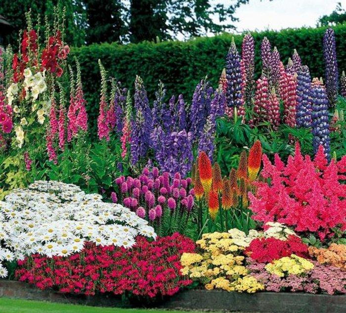 idée de génie jardin originale, parterre de fleurs, différents genres de fleurs, de taille et e couleurs diverses, idée deco jardin