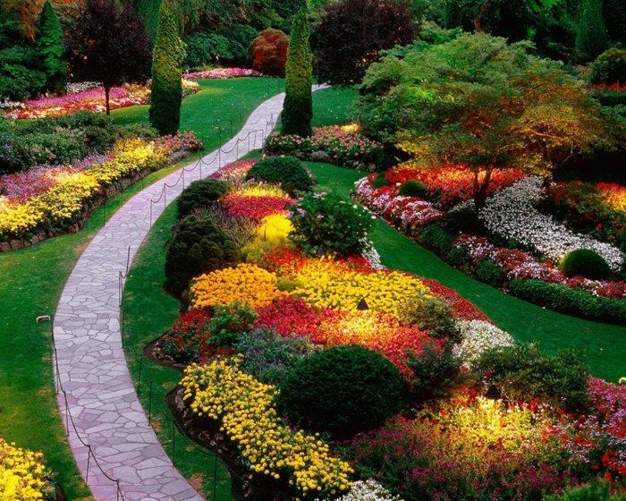 plusieurs ilots fleuris, fleurs de couleurs diverses, arbres, arbustes, une allée de pierres, idée de génie jardin originale,