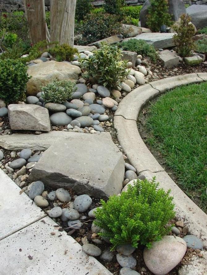 plantes-de-rocaille-arbustes-sur-des-pierres-idée-comment-faire-une-rocaille-aux-abords-d-un-petit-pelouse