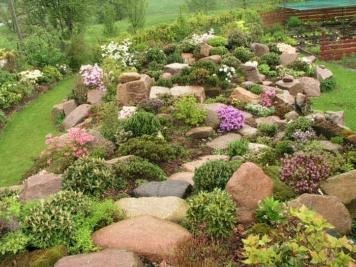 plantes-de-rocaille-fleurs-et-abrustes-verts-idée-comment-faire-une-rocaille-amenagement-coin-alpine-jardin