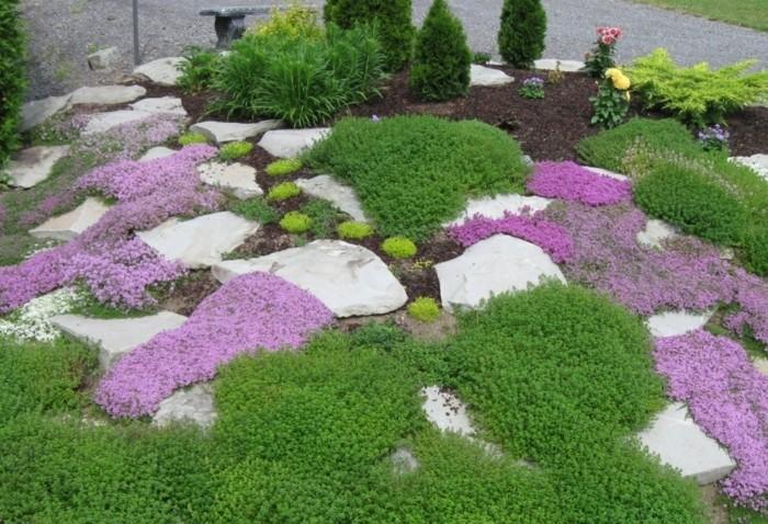plantes-tapissantes-verts-et-mauve-des-rochers-et-terreaux-idée-amenagement-coin-vert