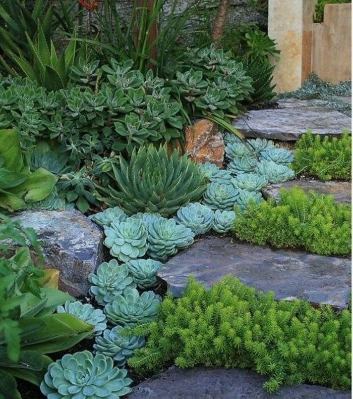 rocaille-fleurie-en-pente-avec-des-succulents-un-petit-escalier-en-pierre-idée-comment-faire-une-rocaille