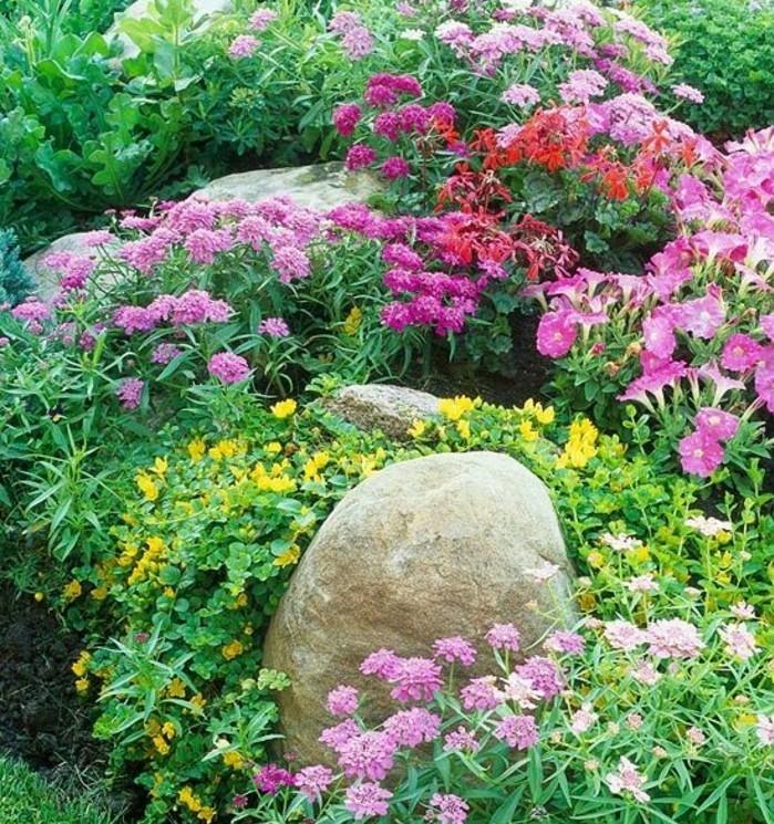 rocaille-fluerie-beaucoup-de-fleurs-de-couleurs-diverses-et-grosse-pierre-decoration-jardin-idée-amenagement-jardin