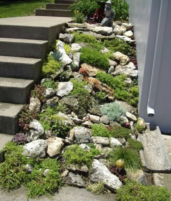 rocaille-jardin-couverte-de-végétation-le-long-d-un-escalier-en-béton-idée-comment-faire-une-rocaille
