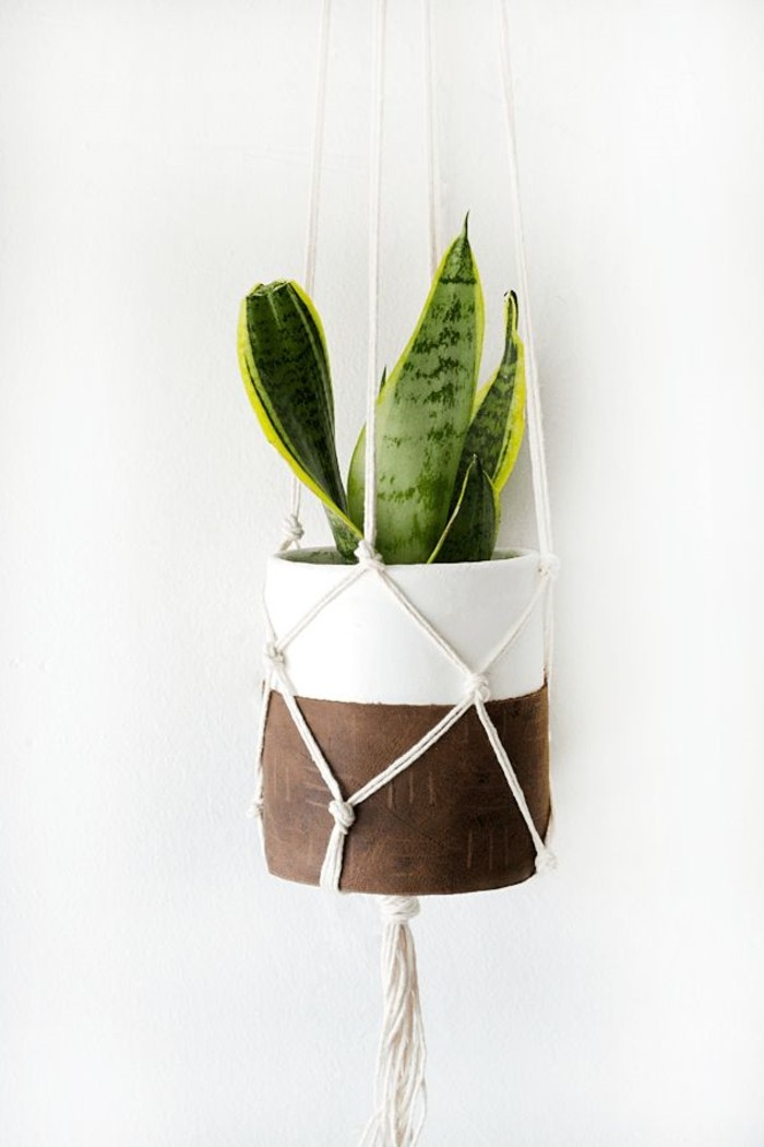 diy macramé, plante verte, pot à fleur blanc et marron, macramé technique
