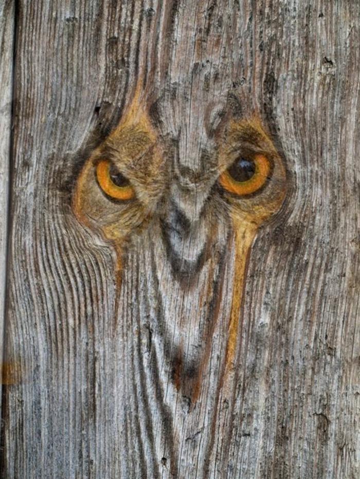 tableau bois flotté, une chouette originale